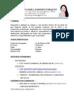 Cv Andrea Paredes