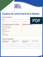6.4.3 Daily Diabetes Mgt Book