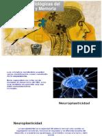 Bases Neurobiológicas Del Aprendizaje y Memoria