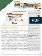 Ceam Rev0 Resumen CAMUFLAJEblog 07 2014