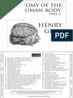 Anatomy Human Body 4