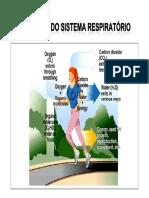 mecanica_da_ventilacao_pulmonar_2010.pdf