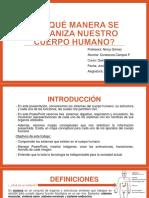 PPT_ Constanza Campos Ferreira_quinto Año A