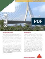 Reparacion Proteccion Puente Dovali Coatzacoalcos 2 (2)