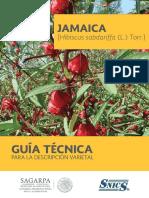 Guía Para La Descripción Varietal de La Jamaica