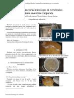 Articulo Cientifico(Estructuras Homologas)