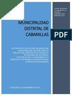 INFORME Tecnico de Peligro y Vulnerabilidad CabanillascCOMPLETE