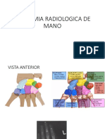 Anatomia Radiologica de Mano