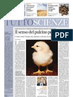 senso_pulcini_numeri