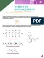 06 Nomenclatura de Compuestos Organicos