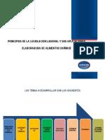 Módulo Principios Laborales y Sus Aplicaciones EAD ANALISTAS Y ADMINISTRATIVOS