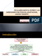 Adaptacion Lesion y Muerte Celular