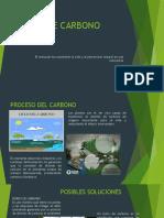BONOS DE CARBONO.pptx