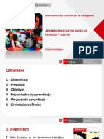 Curriculo-de-Emergencia-24-03-17.pdf