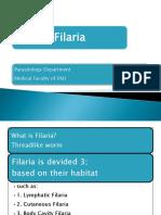 Filaria MKT