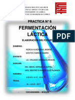 PRACTICA N° 6 FERMENTACION LACTICA