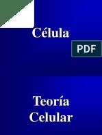 62834716.3-célula