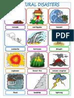 picture card presentation.doc