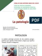 Patología Exp