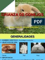 Cria de Conejos