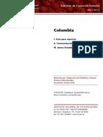 InformeEstadiColombia.pdf