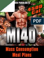 mi404500cal.pdf