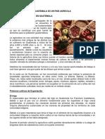 Guatemala Es Un País Agrícola