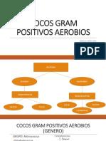 COCOS-GRAM-POSITIVOS-FIDEL.pptx