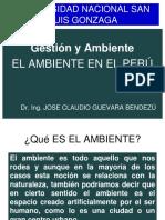 02-AMBIENTE PERUANO