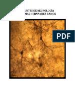 Neurothomasdefinitivi.docx