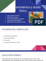 Ácido Pantoténico y Ácido Fólico