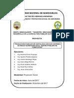 PROYECTO PROYECCION SOCIAL   2017.docx