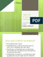 Taller-de-Autocultivo-de-Cannabis.pdf