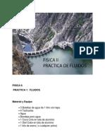 Practica 1 - Fluidos