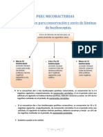 Banner Lab Biomedico_archivo Adjunto_Instructivo Para Conservación y Envío de Láminas PEEC