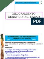 7 Mejoramiento Cacao Ingrid Espo