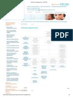Estructura Organizacional - OSIPTEL