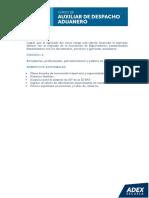 ADEX - Auxiliar Despacho Aduanero.pdf