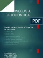 275064651 Terminologia Ortodontica 1 Pptx