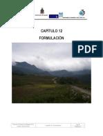 Informe Formulacion Rio Pauto