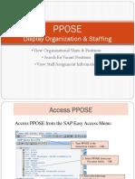 SAP Organisation Management
