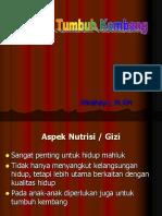Balita dan Tumbuh Kembang.ppt
