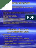12.Cancer Colon