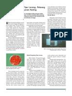wr243022.pdf