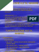 4. Cancer Gl Mamare