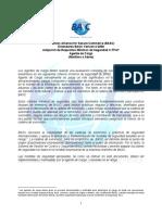 Estandar_Agente_de_Carga_-_Agente_General.pdf