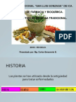 1 Med Trad Iip Fitoterapia