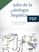 Estudio patología hepática 2017
