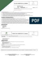 Norma de Competencia Laboral 270101032