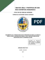 Documento de Cebolla Bien
